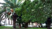 Парк в Лутраки